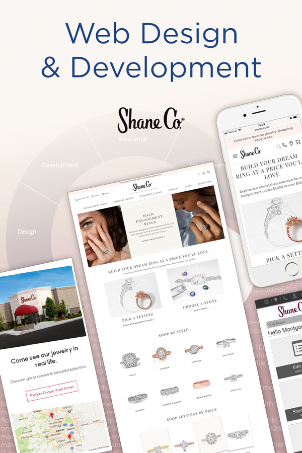 Web Projects for Shane Co.
